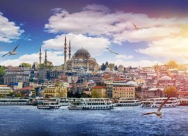 Istanbul Mosque Cami Gezi Tour Travel Bosphorus Movie Serial Shopping Bazaar Turkish Delight Buy Food Halal